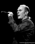 Peter Murphy, El Rey Theatre Los Angeles, CA 7/3/14